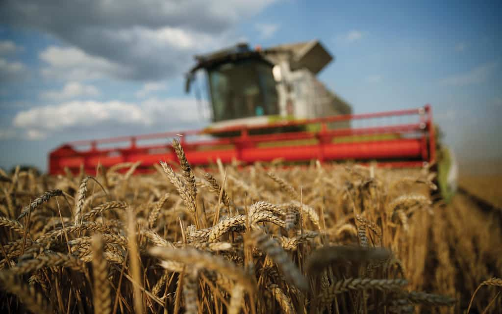 Climate Change And Our Food