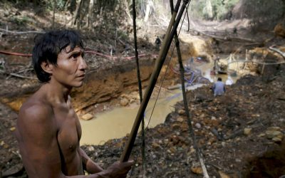 Brazil's Yanomami Ask OAS for Help Keeping Out Miners, COVID-19