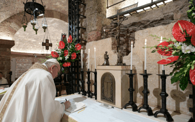 Belief in God as creator of all has consequences, pope says in new encyclical