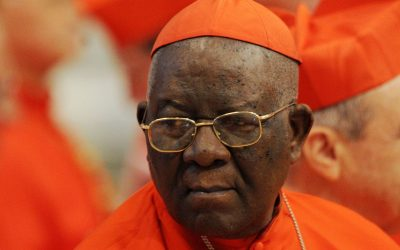 African Cardinal Kidnapped in Cameroon, Released Unharmed
