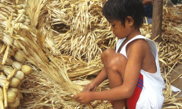 2021: A Year Highlighting Child Labor